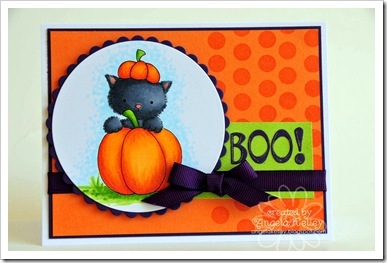 Angi Kelley-pumpkin kitty